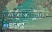 AE模板10种花卉设计线条元素婚纱微电影相册视频标题动画