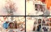 AE模板树枝悬挂唯美婚礼家庭照片展示美好回忆相册视频动画