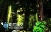 浪漫森林小木屋童话恋曲高清婚礼舞台背景视频素材