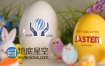 AE模板复活节节日庆典实拍兔子电子贺卡动画
