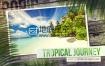AE模板棕榈树热带旅游度假旅游胜地相册动画地底星空