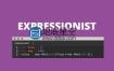 AE脚本:表达式编辑错误检查脚本 Aescripts Expressionist v1.5