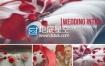 AE模板唯美爱情浪漫情人节玫瑰花瓣婚礼相册