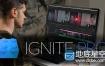 Ae/Pr特效合成套装插件FXhome Ignite Pro 2.2.7729.53583 CE