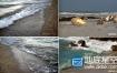 视频素材:高清实拍海螺贝壳海水浪花
