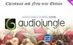 音效:AudioJungle上最精彩的160首圣诞歌曲
