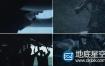 视频素材:企业团队合作成功励志视频