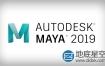 Autodesk Maya 2019 Win/Mac/Linux 注册机破解版