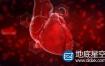 AE模板:人类心脏跳动生物学细胞染色医疗Heart Reveal