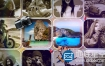 AE模板-假期旅游度假照片墙相册片头 Holiday Slideshow