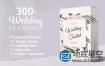 AE模板-300+婚礼复古框架装饰元素动画场景唯美文字排版标题设计动画