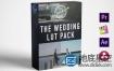 LUTs预设:13组婚礼视频调色+10组光斑耀斑视频素材