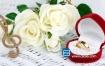 音效素材:40首浪漫甜蜜喜庆轻快悠扬溫馨舒缓感人婚礼背景音乐