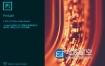 PL 2020 视频管理剪辑处理软件中文英文破解版 Prelude 2020 Win/Mac
