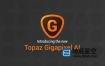 图片无损放大软件 Topaz Gigapixel AI 5.1.5 Win破解版