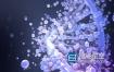3D模型-Stardust星辰粒子插件的3D模型预设库 AE Stardust 3D Library Win