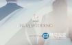 LUTS预设-25种欧美婚礼电影风格LUTS调色预设 mLUT Film Wedding