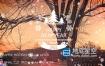 FCPX插件-冬天下雪相册照片幻灯片文字排版介绍片头 Apple Motion模板 Winter Slideshow