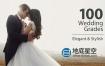 LUTS调色-100组婚礼视频LUTS调色预设 Wedding Color Corrections