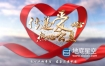AE模板-照片墙演绎成红丝带爱心公益片头动画