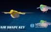 Blender插件-毛发生成插件 HairShapeKey V5.2 For Blender 2.79+使用教程