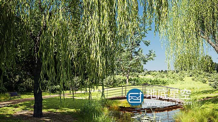 Blender插件-植物树木草地模型预设 Botaniq Tree And Grass Library V6.2.2